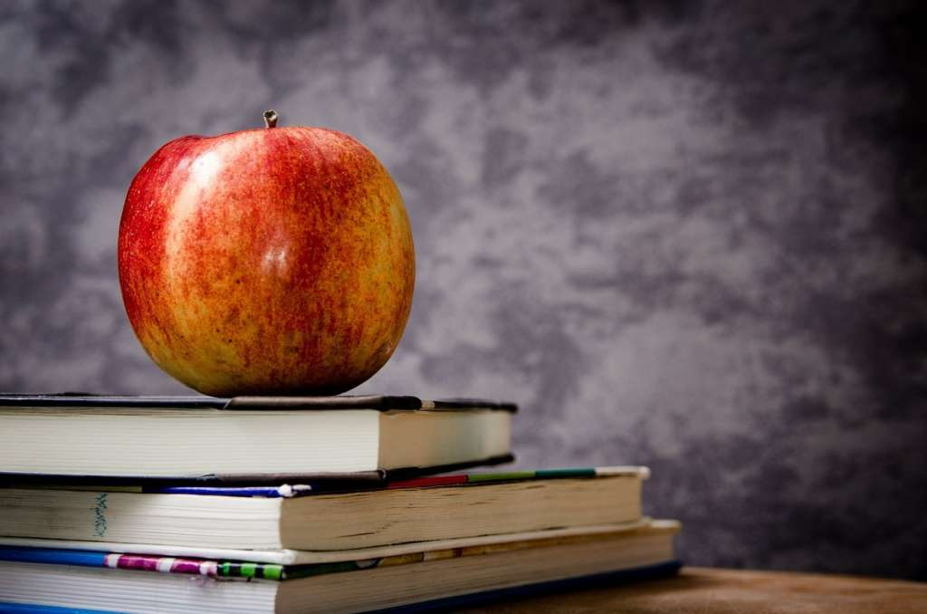 Adult Education and Training Courses