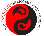 Master Practitioner Certification in Applied Biomagnetic Therapy