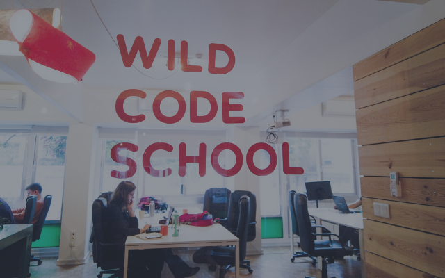 My First 6 Months at Wild Code School