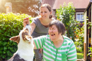 OpenTrainingCollege: BA in Social Care Degree – Opens for applications on 31st March